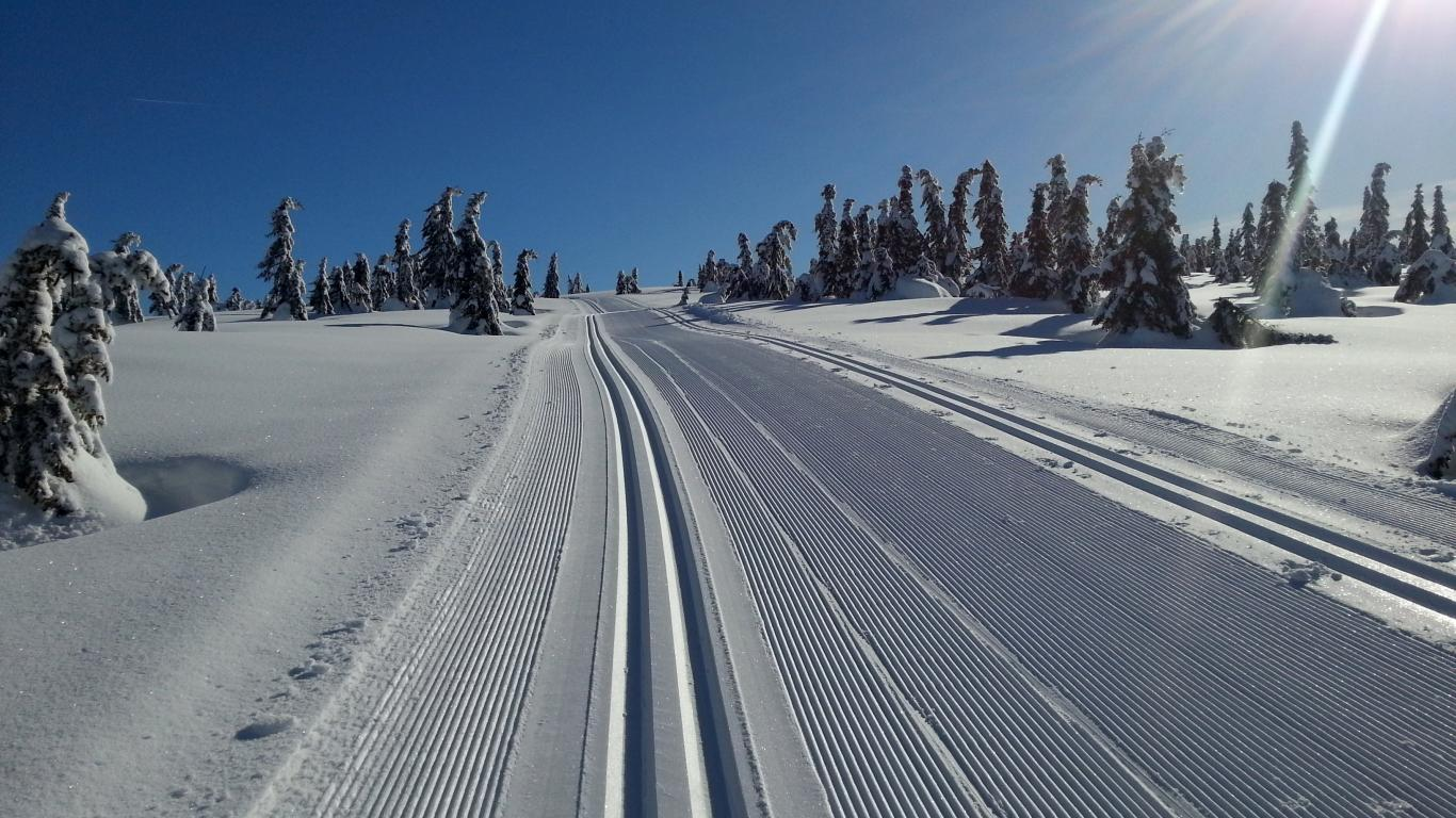 cross country ski tracks in Nordseter some of the best in the world
